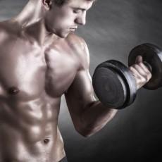 Salud - Biceps